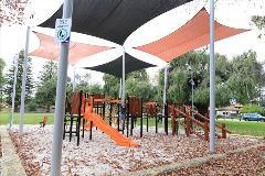 Olives Reserve 9