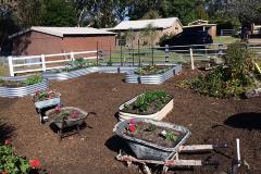 McDougall Farm Community Garden