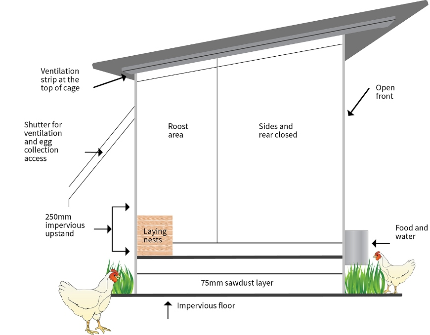 Diagram of a recommended poultry shed design